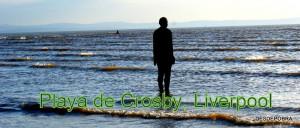 PLAYA DE CRISBY (LIVERPOOL)